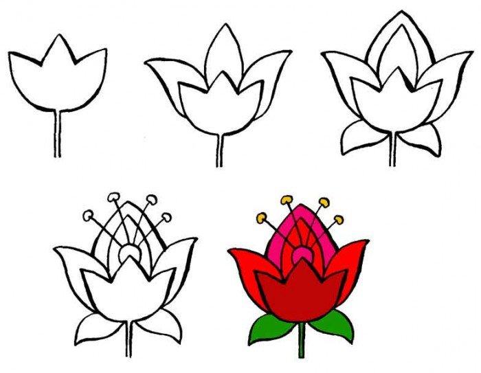 Как нарисовать цветок, фото