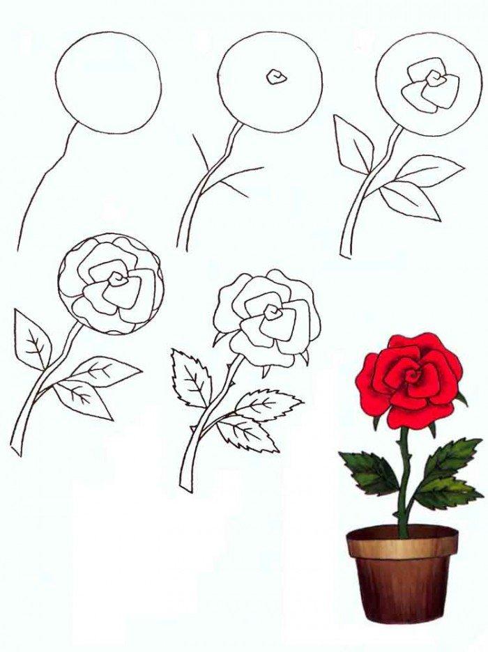 Як намалювати розу, фото