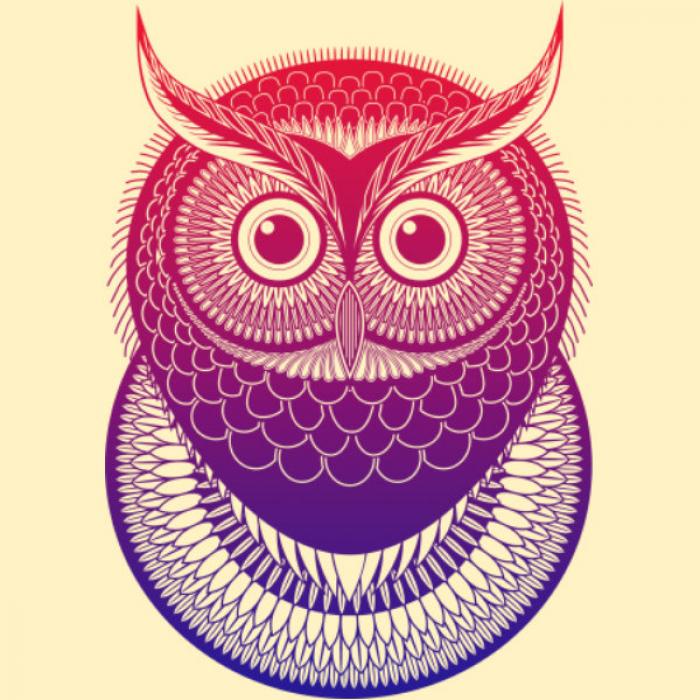 Як намалювати сову з детальним візерунком