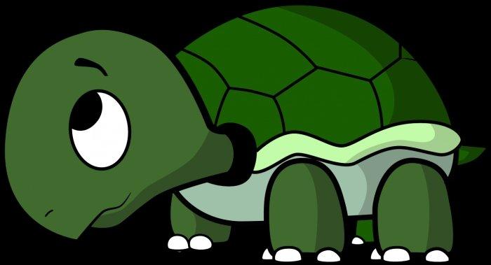 Как нарисовать черепаху карандашом поэтапно, фото 12