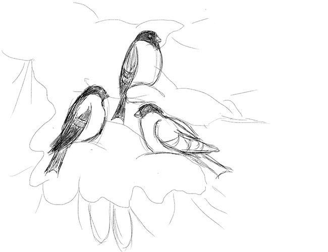 Рисуем снегирей на ветке. Шаг 7