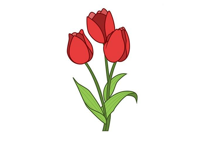 Малюємо тюльпани