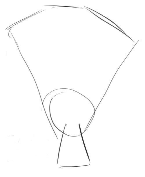 Как нарисовать розу шаг за шагом – схема, фото 24