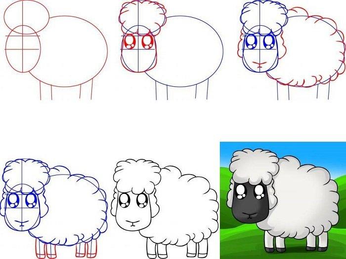 Як намалювати овечку схема 3