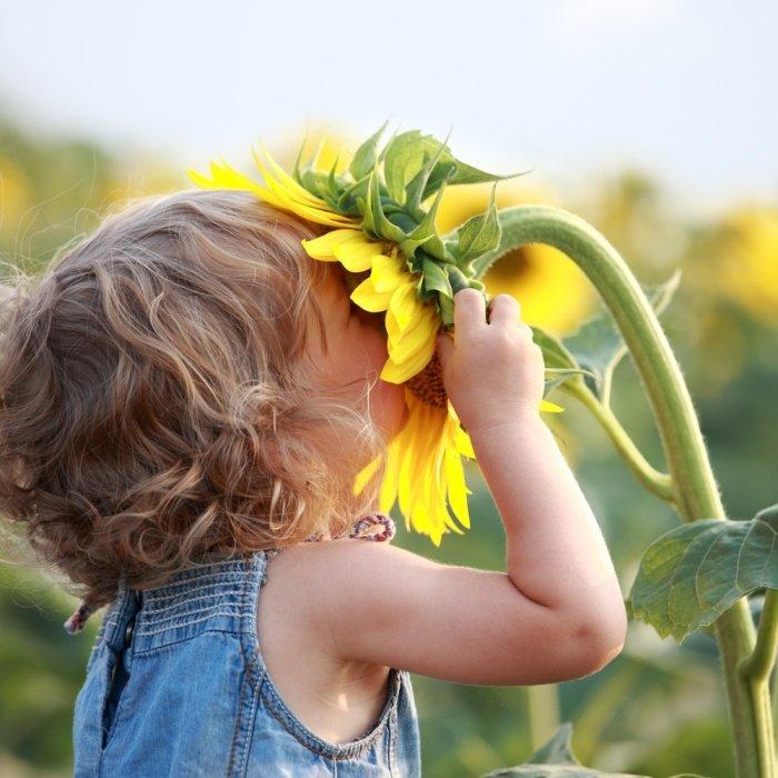 Сценарий осеннего бала для дошкольников, фото 4