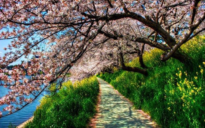 Чего ты не знал о весне