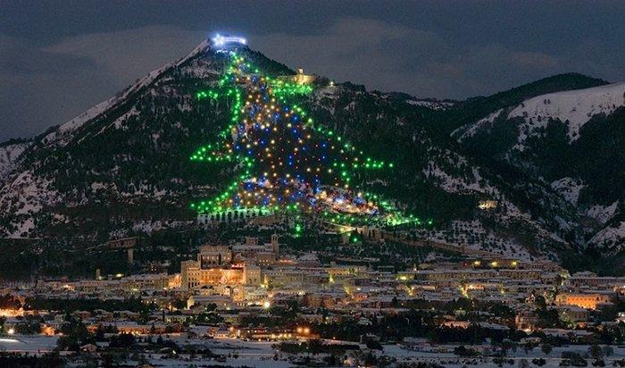 Главные новогодние елки мира. Самые красивые рождественские елки, фото 6