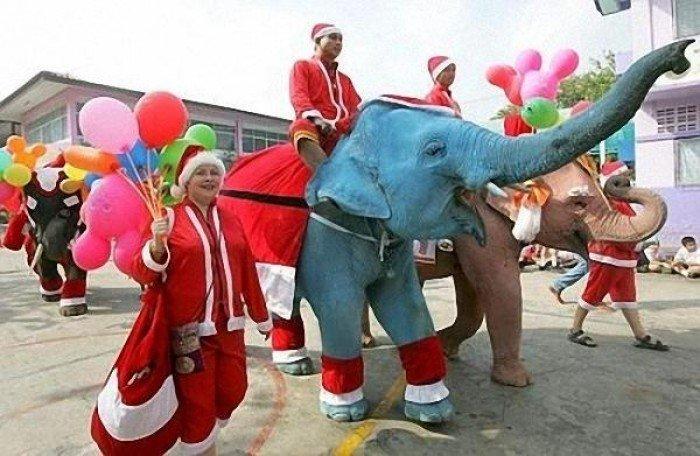 В чем встречать новый год в тайланде