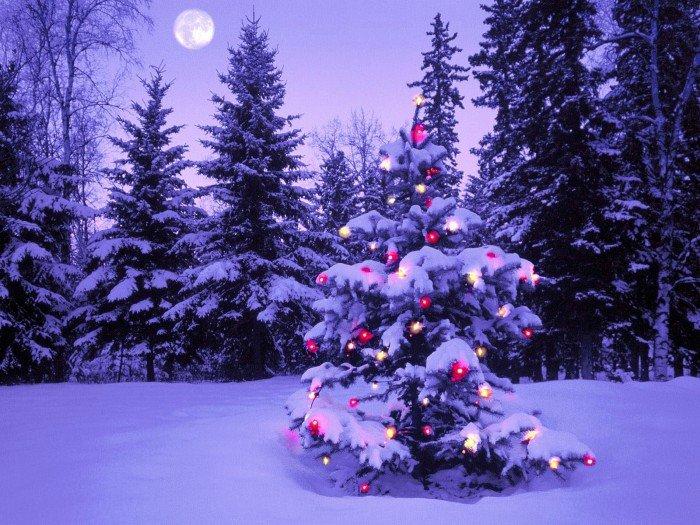 Новогодние песни для детей, фото 7