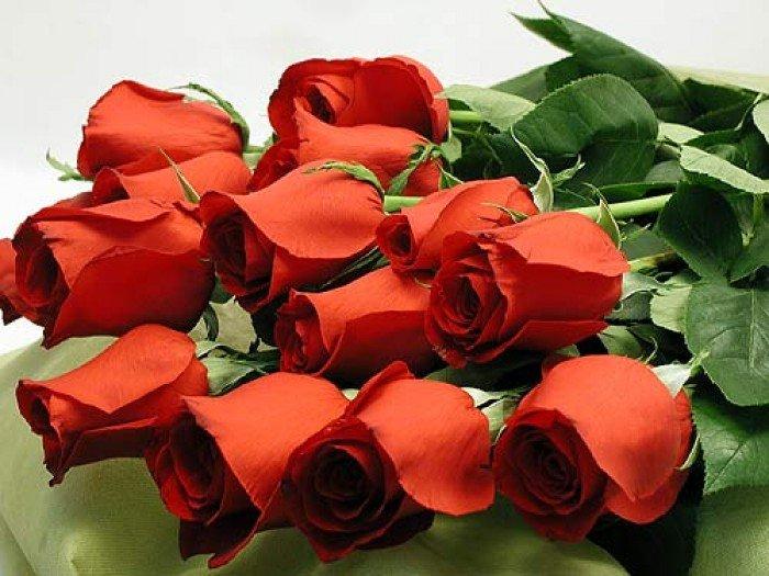 Букет червоних троянд на 8 Березня