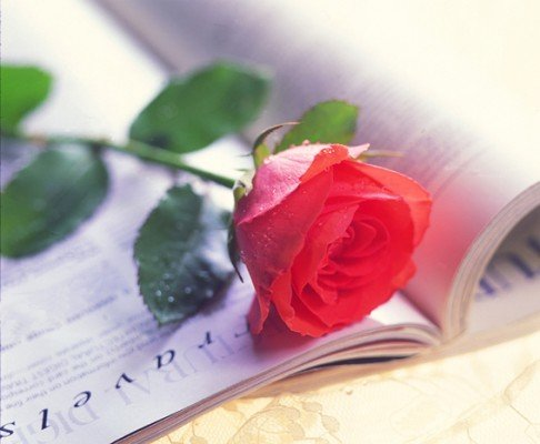Всесвітній день поезії