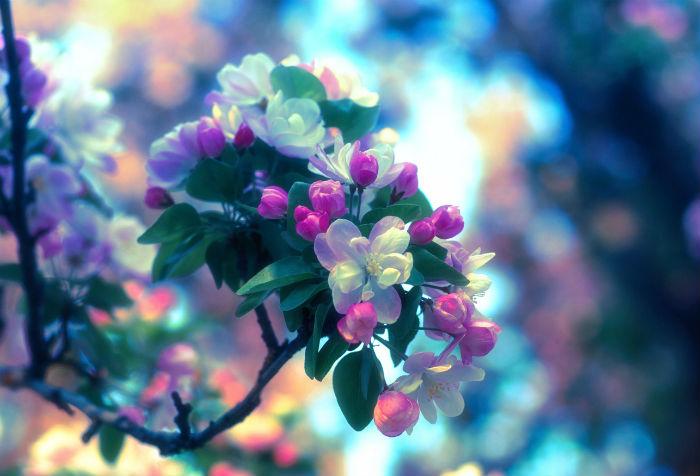 вірші про весну для дітей