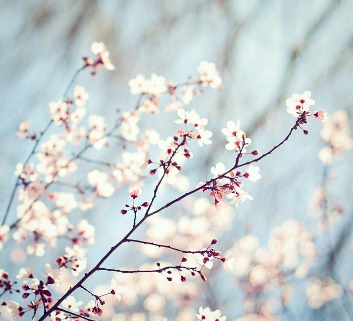 Стихи о весне на украинском языке