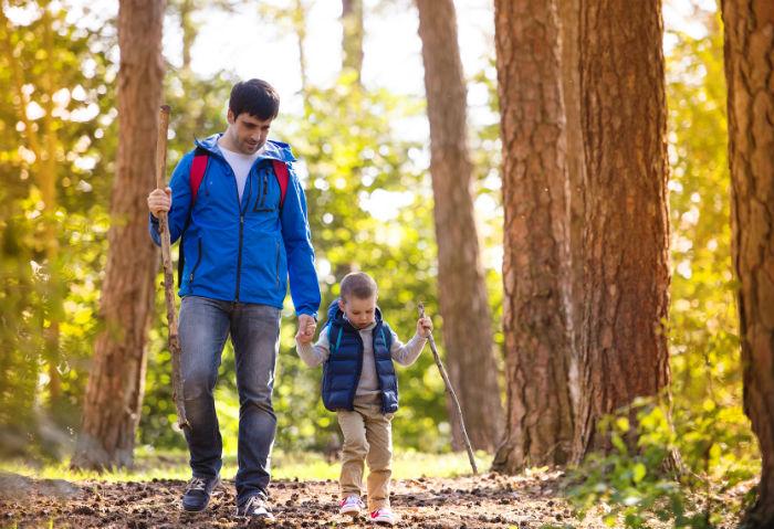 Правила поведінки у лісі