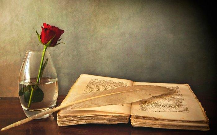 Книгу читають не очима, а розумом.