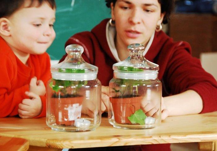 Биологические эксперименты для детей, фото 9