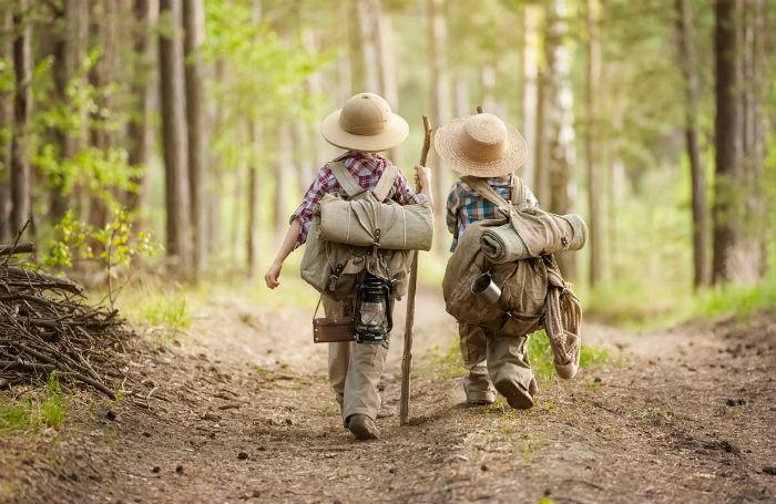 як не заблукати в лісі