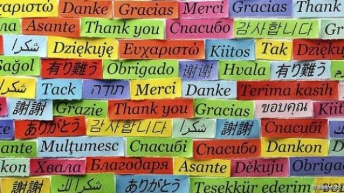 Пословицы и поговорки о родном языке