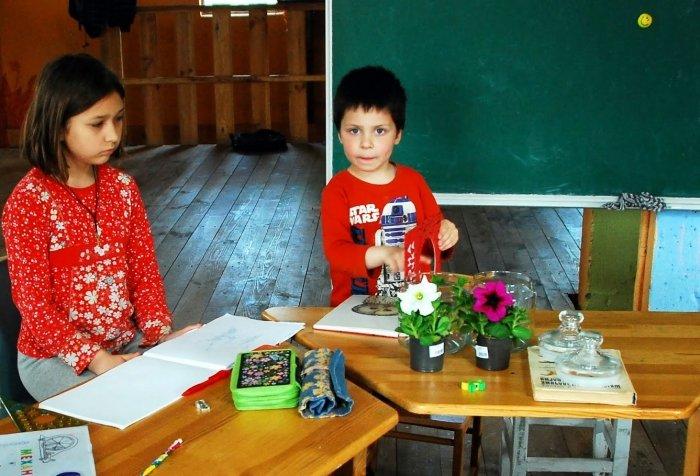 Биологические эксперименты для детей, фото 7