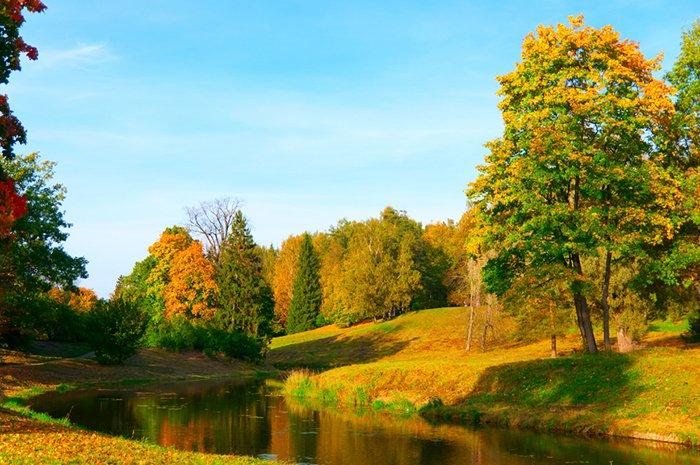 Осінній місяць - Вересень, фото 7