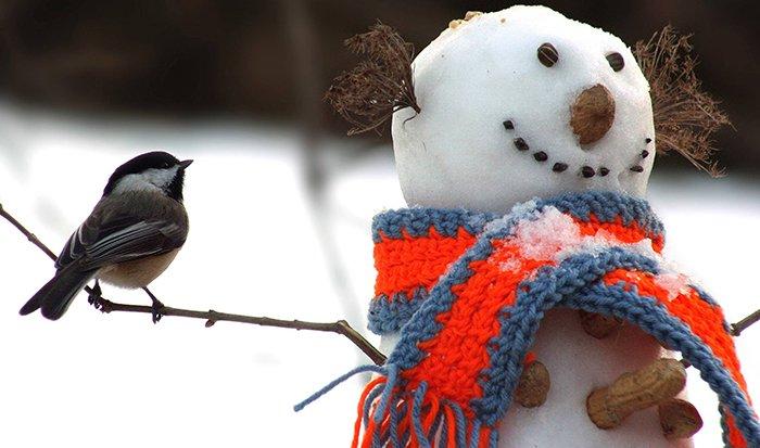 Дитячі вірші про зиму, фото 11