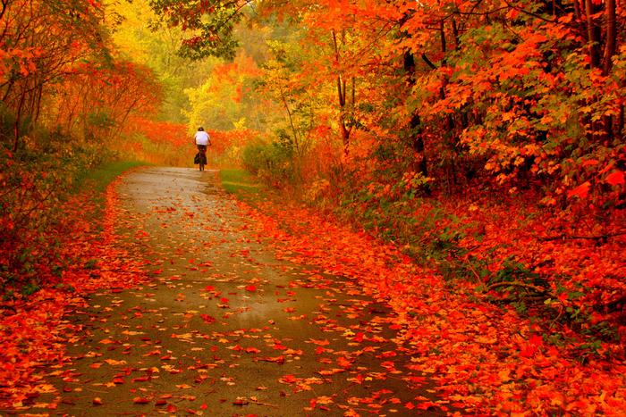 Красиві вірші про осінь на українській мові, фото 1