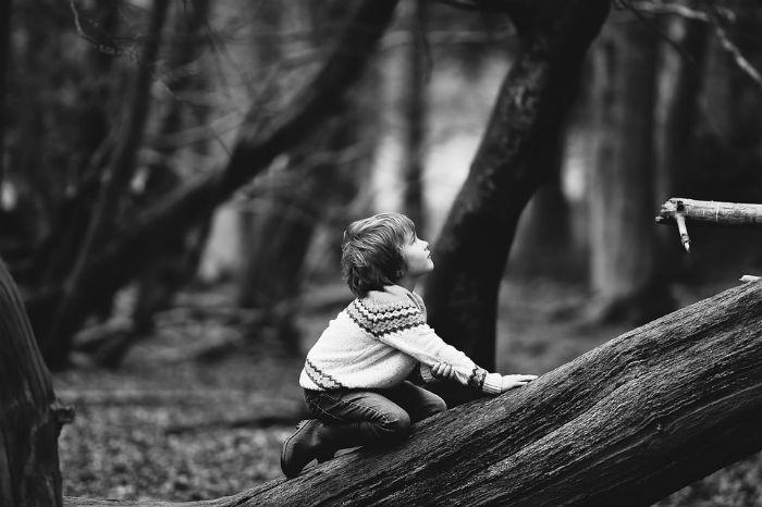 поради, якщо заблукав у лісі