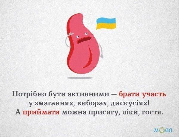 Українська граматика на малюнках