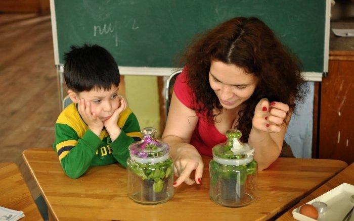 Биологические эксперименты для детей, фото 8