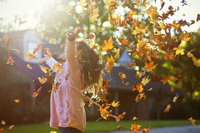 Осінній місяць - Вересень, фото 9