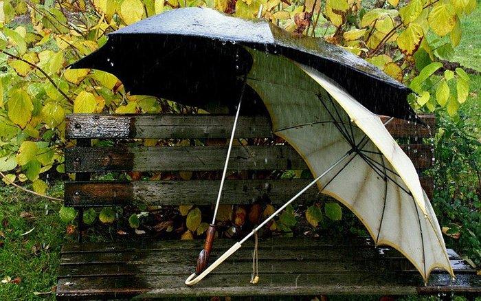 Осень - фото сентября, 3