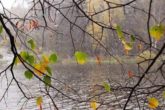 Пословицы и поговорки о природе