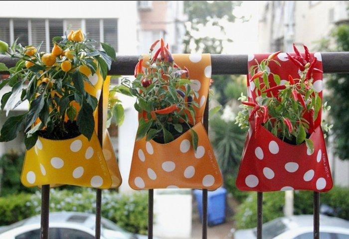 Мини-огород на балконе своими руками - фото 4