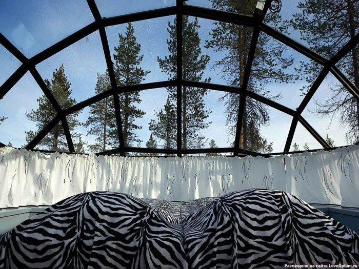 Отель в Лапландии - иглу из стекла
