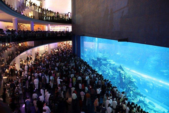 Самые большие аквариумы в мире - Дубай, фото 8