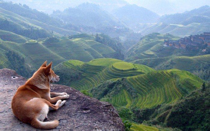 Красивые пейзажи природы. Фото - Китай, горы
