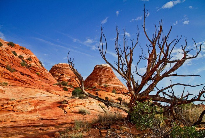 """""""Волна"""", Аризона (США) - фото 5"""