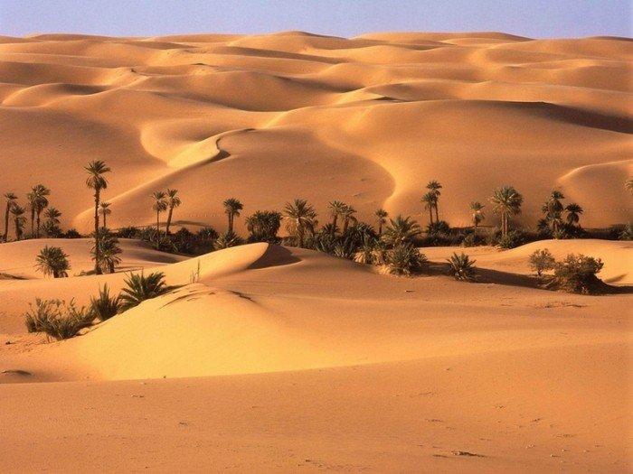 Самые жаркие точки мира, фото - Эль-Азизия