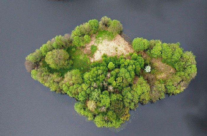 Островок на озере в Польше летом
