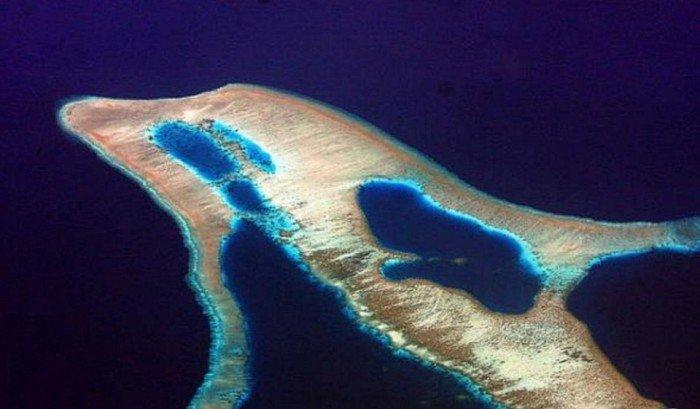 Необычные острова, фото - остров-дельфин