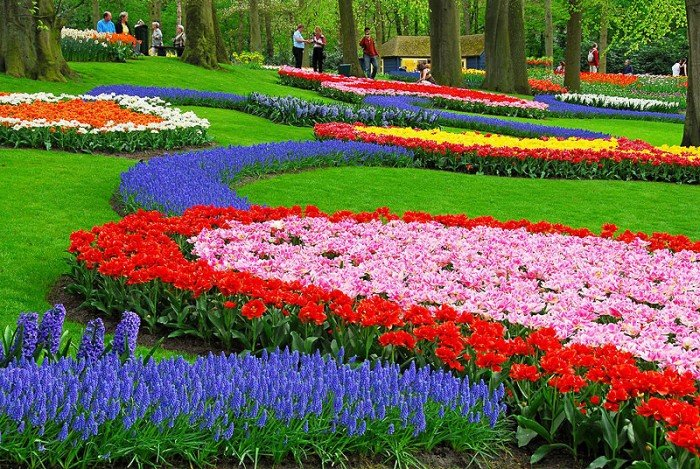 Самые красивые сады мира, фото - Парк цветов Кекенхоф в Нидерландах