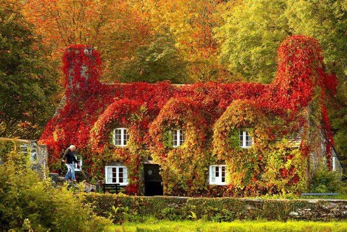 Осенние пейзажи. Домик Лланрусте в Северном Уэльсе летом осенью