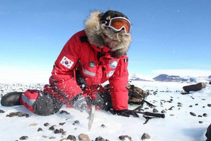 Тайны Антарктиды - метеориты