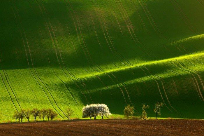 Самые красивые пейзажи от профессиональных фотографов, фото природы - 6