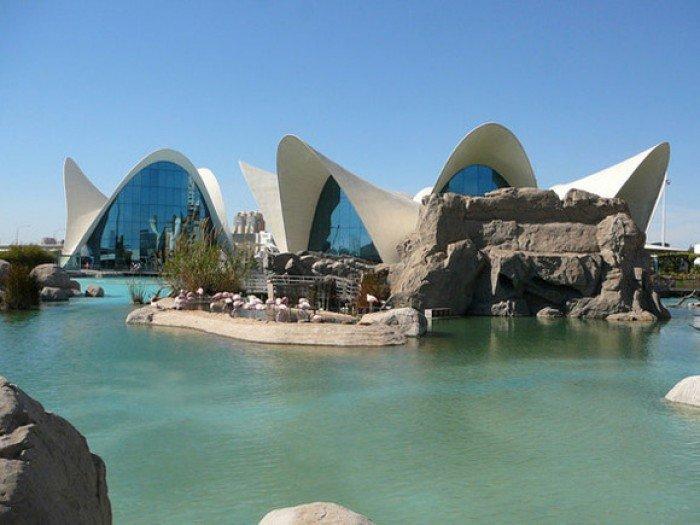 Самые большие аквариумы в мире - Испания, фото 1