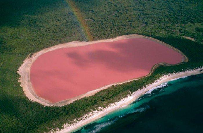 Кояшское озеро в Крыму, розовое озеро - фото 4