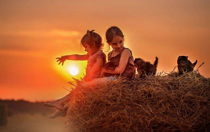 Притчи, которые перевернут Твое представление о дружбе