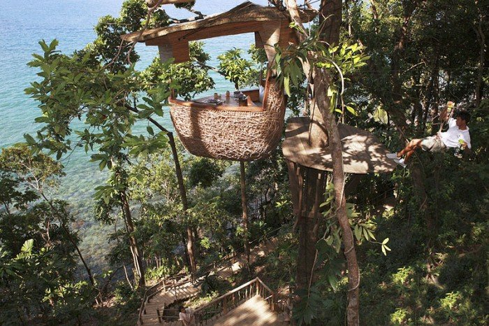 Ресторан на дереве «Птичье гнездо» в Таиланде, фото 1