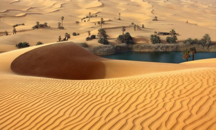 Тайны Сахары, фото 2