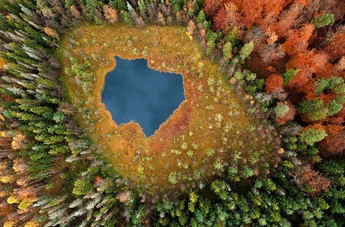 Осенний пейзаж, Лесное озеро, Польша